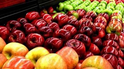 Україна експортувала рекордні обсяги яблука