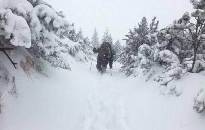 Українців попереджають про небезпеку сходження лавин у Карпатах