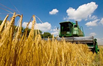 Україна заробила на експорті зерна рекордні $7,2 мільярда