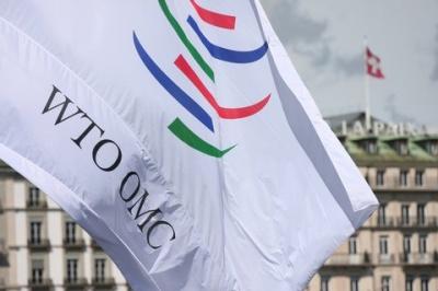 Україна поскаржилася до СОТ на РФ через перешкоди для транзиту