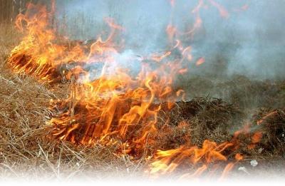 На Буковині рятувальники погасили дві масштабні пожежі на відкритій території