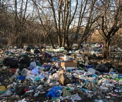 «Суцільне сміттєзвалище»: як виглядає територія біля кордону з Молдовою на Буковині - відео