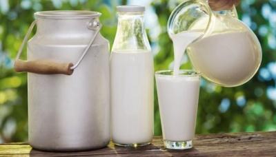 На Буковині зафіксували найнижчу вартість молока
