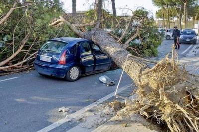 Жертвами буревію в Італії стали троє людей