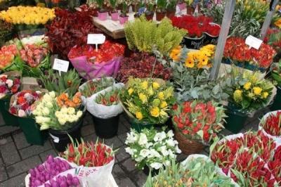 У Чернівцях до 8 березня працюватиме квітковий ярмарок