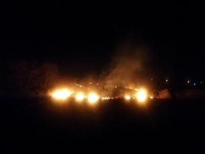 Масштабна пожежа: на околиці Чернівців на відкритій території загорілась трава – фото