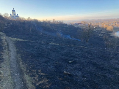 Суху траву на околиці Чернівців могли підпалити - ДСНС