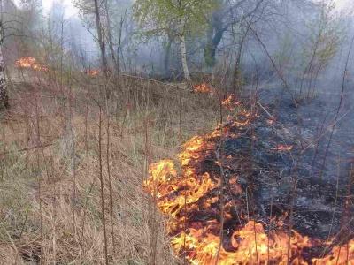 На Буковині на місці загорання сухої трави виявили тіло пенсіонерки