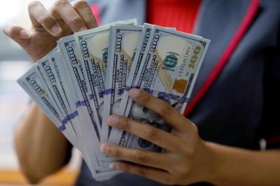Експерти розповіли, що буде з курсом долара в Україні найближчим часом