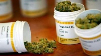 Рада має розглянути легалізацію медичного канабісу