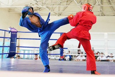 Універсальний бій: буковинці здобули медалі чемпіонату України