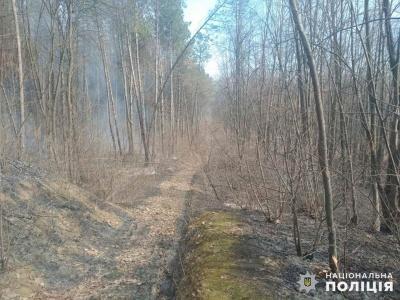 На Буковині рятувальники ліквідували масштабну пожежу в лісі