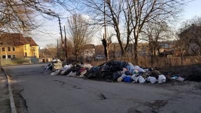 Не вивозили з осені: у Чернівцях житловий мікрорайон захаращений сміттям