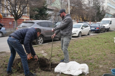 Обшанський посадив дерева на скандальній ділянці в центрі Чернівців