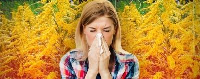 Домашні засоби від сезонної алергії