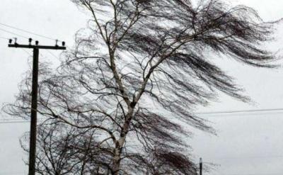 Штормове попередження: у всіх областях України очікується посилення вітру