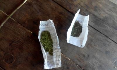 У підлітка в кишенях виявили 7 згортків марихуани: за добу поліція вилучила наркотики у 4 буковинців