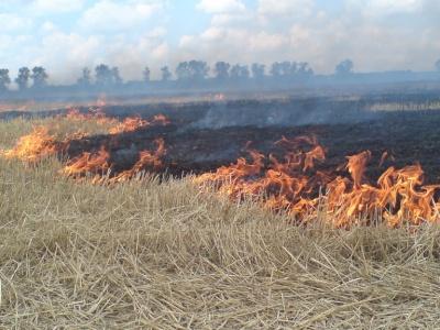 На Буковині через спалювання сухої трави горів житловий будинок