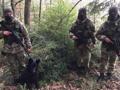 Біля кордону на Буковині собака «винюхав» сховок із 2,5 тис пачок сигарет