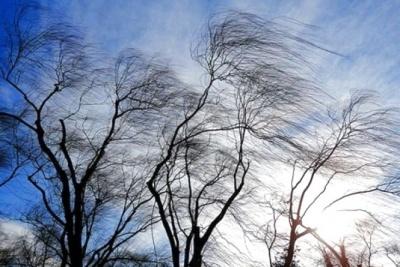 Штормове попередження: синоптики прогнозують негоду на Буковині 27 березня