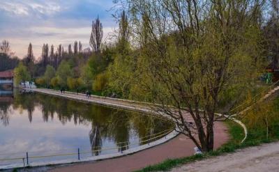 У Чернівцях міськраду просять ліквідувати платну стоянку в парку «Жовтневий»