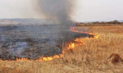 Буковинці продовжують спалювати суху траву: в неділю горіли гектари землі