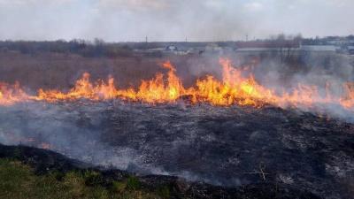 На Буковині через масштабне загорання сухої трави пошкоджено елементи кордону з Румунією