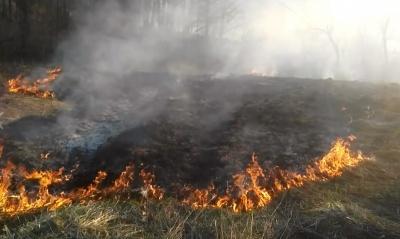 Буковинці продовжують спалювати суху траву: в неділю горіло понад 17 га землі