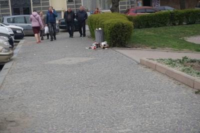 Центр Чернівців потопає у смітті - фото