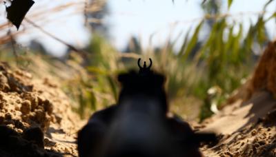 З початку доби бойовики чотири рази обстріляли позиції ЗСУ, один військовий поранений