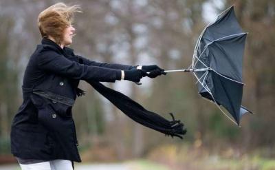 Штормове попередження: на Буковині прогнозують сильний вітер і заморозки