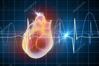 Живе серце вперше в світі надрукували на 3D-принтері в Ізраїлі