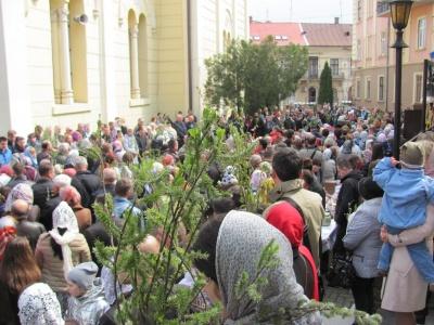 Чернівці святкують Вербну неділю: у церквах освятили вербові гілки – фото