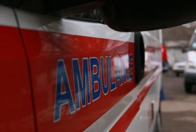 На Буковині дитина потрапила до лікарні через укус змії