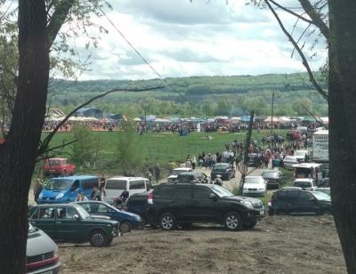 Через фестиваль тюльпанів у селі на Буковині величезні затори