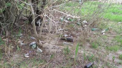 Суцільне сміттєзвалище: береги Дністра на Буковині потопають у пластику і склі - фото