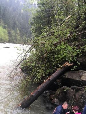 У Карпатах вантажівка з туристами впала в річку з обриву, загинули щонайменше 3 осіб