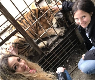 На Буковині волонтери рятували тигрицю у приватному зоопарку