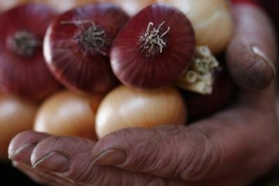 В Україні стрімко зросли ціни на цибулю та інші овочі: інтернет вибухнув жартами