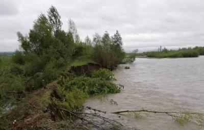 Паводок на Буковині: що відомо на цей час