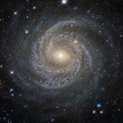 Одна із зірок Чумацького шляху може бути прибульцем з іншої галактики