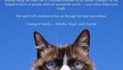 "У США померла ""сердита кицька"" - Grumpy Cat"