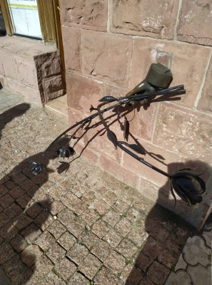 У центрі Чернівців вандали пошкодили пам'ятник трояндам