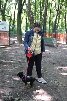 У Чернівцях патрульні вчили, як дресирувати собак - фото