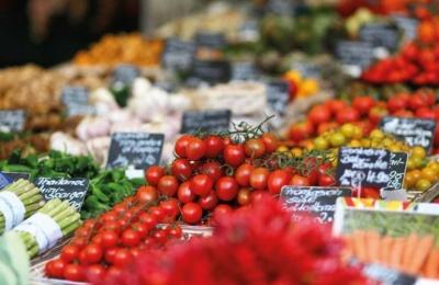 На Буковині зріс обсяг виробництва валової продукції сільського господарства