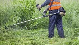У Чернівцях на скошування трави виділили майже 1,5 мільйона гривень