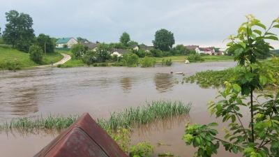 У Тернопільській області річка затопила село: вода протікала вулицями – відео