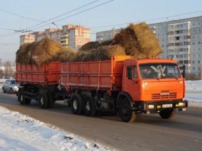 У Чернівцях почали штрафувати водіїв вантажівок за перевезення сипучих матеріалів без тентів