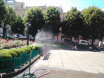 Порятунок від спеки: у Чернівцях під мерією встановили розпилювач води і кулер