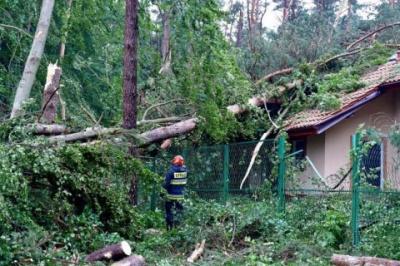 У Польщі ураган поламав дерева та пошкодив дахи